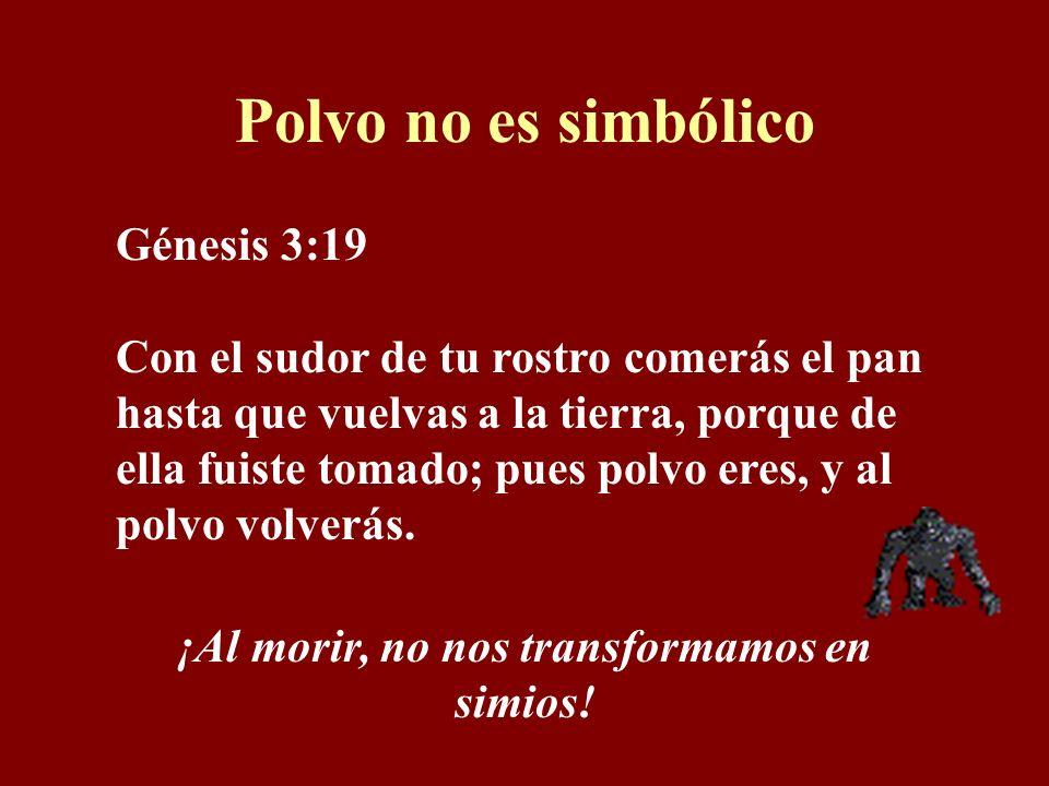 Polvo no es simbólico Génesis 3:19 Con el sudor de tu rostro comerás el pan hasta que vuelvas a la tierra, porque de ella fuiste tomado; pues polvo eres, y al polvo volverás.