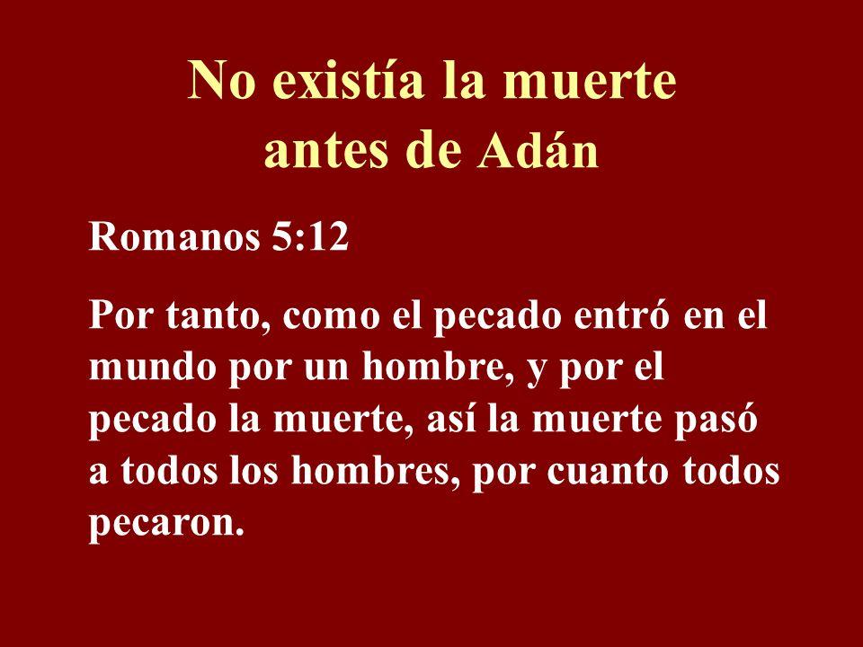 No existía la muerte antes de Adán Romanos 5:12 Por tanto, como el pecado entró en el mundo por un hombre, y por el pecado la muerte, así la muerte pasó a todos los hombres, por cuanto todos pecaron.