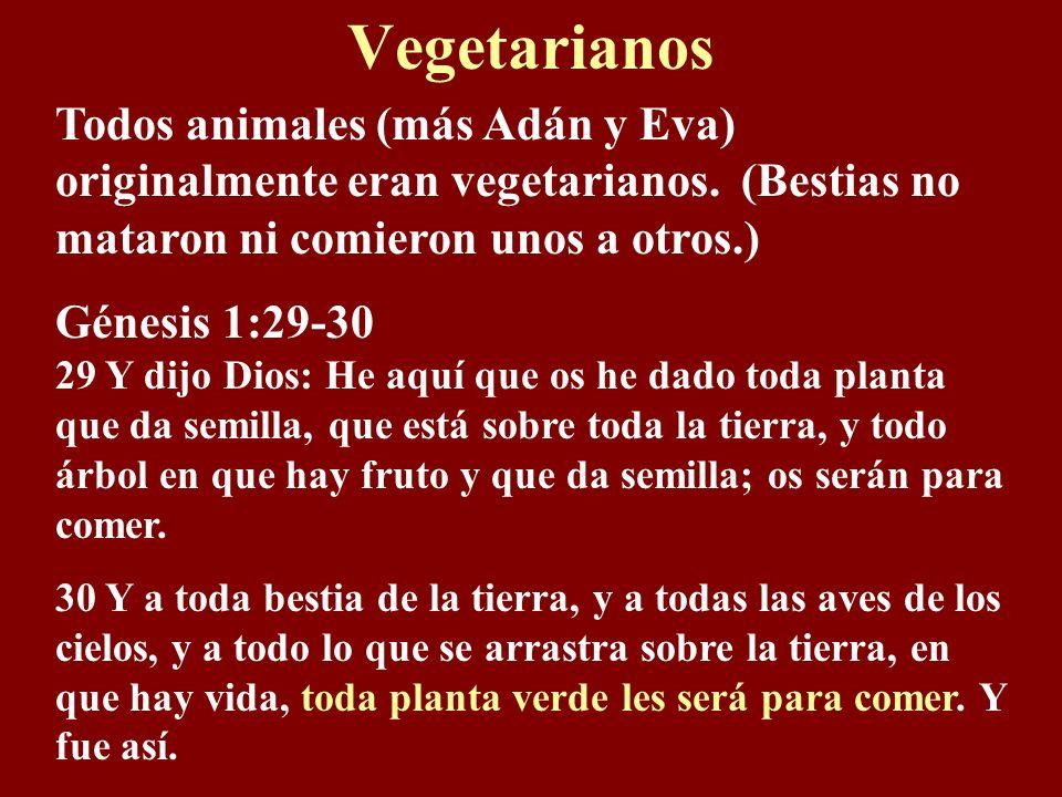 Vegetarianos Todos animales (más Adán y Eva) originalmente eran vegetarianos.