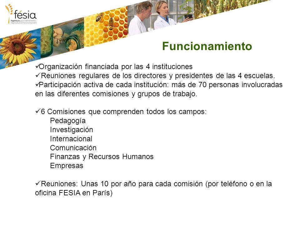 Funcionamiento Organización financiada por las 4 instituciones Reuniones regulares de los directores y presidentes de las 4 escuelas. Participación ac
