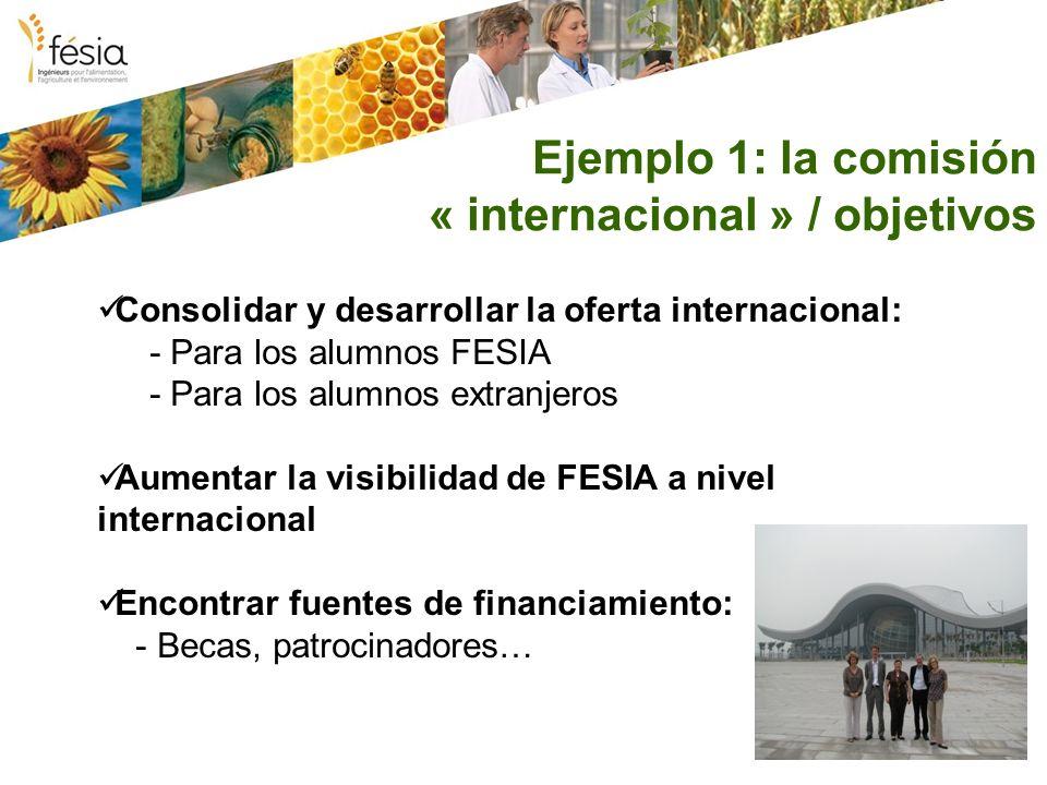 Ejemplo 1: la comisión « internacional » / objetivos Consolidar y desarrollar la oferta internacional: - Para los alumnos FESIA - Para los alumnos extranjeros Aumentar la visibilidad de FESIA a nivel internacional Encontrar fuentes de financiamiento: - Becas, patrocinadores…