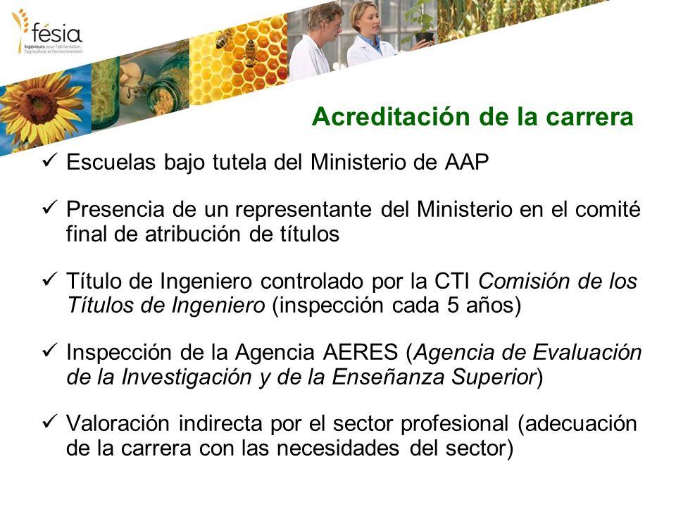 Acreditación de la carrera Escuelas bajo tutela del Ministerio de AAP Presencia de un representante del Ministerio en el comité final de atribución de