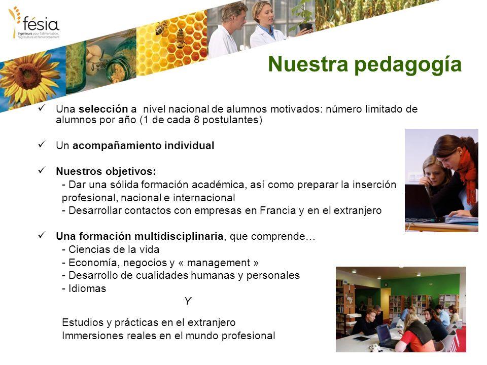 Nuestra pedagogía Una selección a nivel nacional de alumnos motivados: número limitado de alumnos por año (1 de cada 8 postulantes) Un acompañamiento
