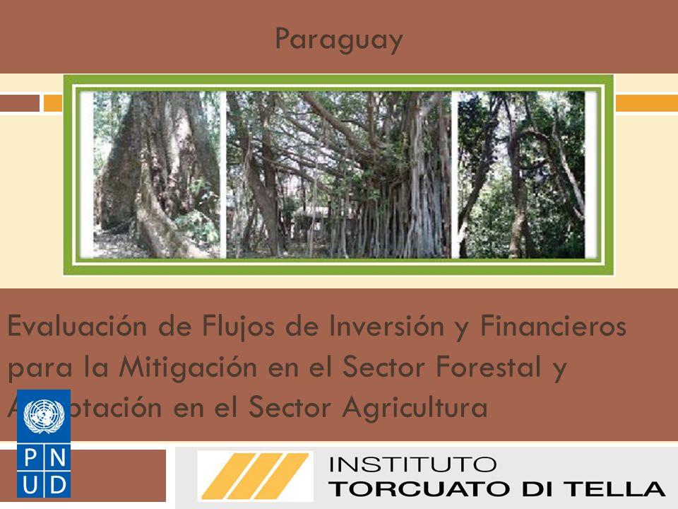 Evaluación de Flujos de Inversión y Financieros para la Mitigación en el Sector Forestal y Adaptación en el Sector Agricultura Manual de Metodologías