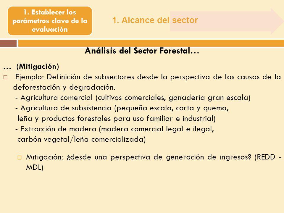 1. Alcance del sector 1. Establecer los parámetros clave de la evaluación Análisis del Sector Forestal… … (Mitigación) Ejemplo: Definición de subsecto