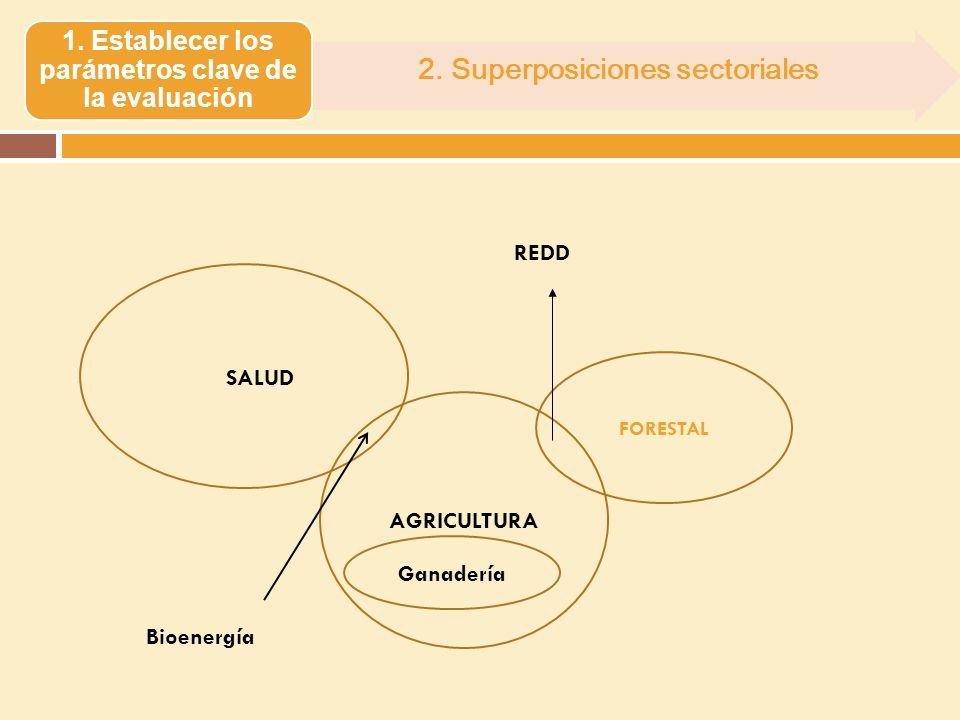 2. Superposiciones sectoriales 1. Establecer los parámetros clave de la evaluación FORESTAL SALUD AGRICULTURA Ganadería Bioenergía REDD
