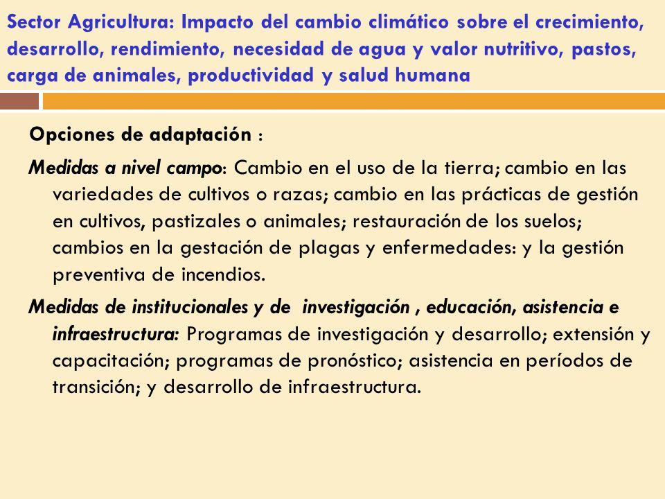 Sector Agricultura: Impacto del cambio climático sobre el crecimiento, desarrollo, rendimiento, necesidad de agua y valor nutritivo, pastos, carga de