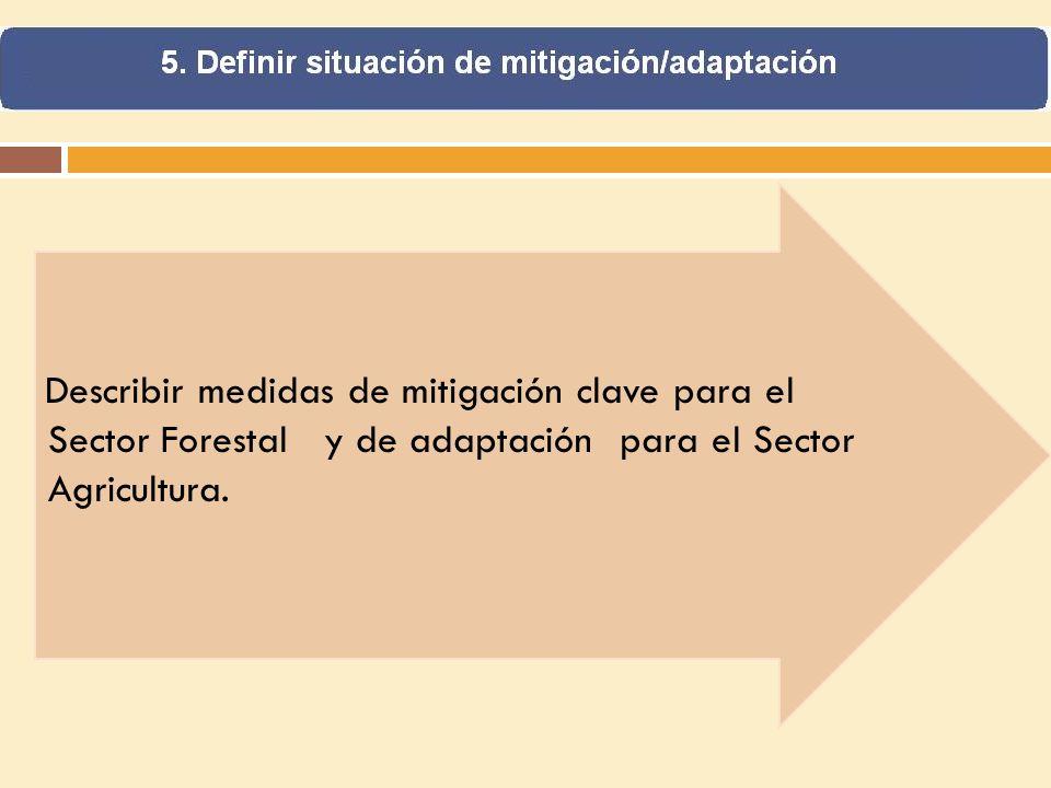 Describir medidas de mitigación clave para el Sector Forestal y de adaptación para el Sector Agricultura.