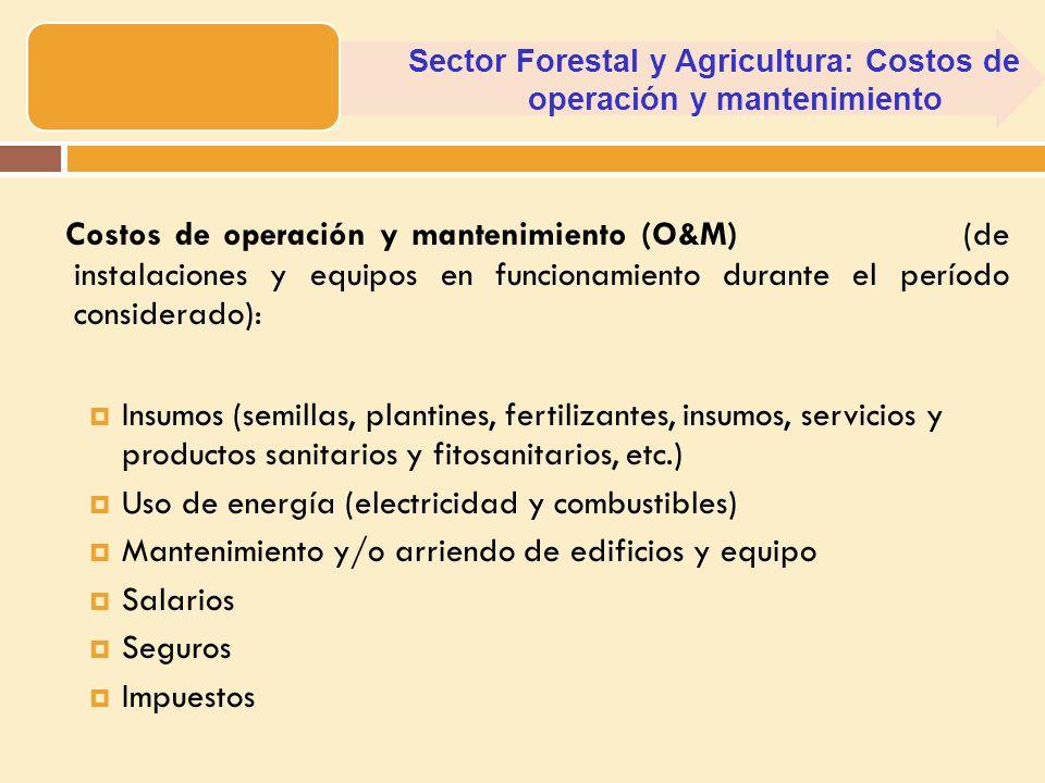 Costos de operación y mantenimiento (O&M) (de instalaciones y equipos en funcionamiento durante el período considerado): Insumos (semillas, plantines,