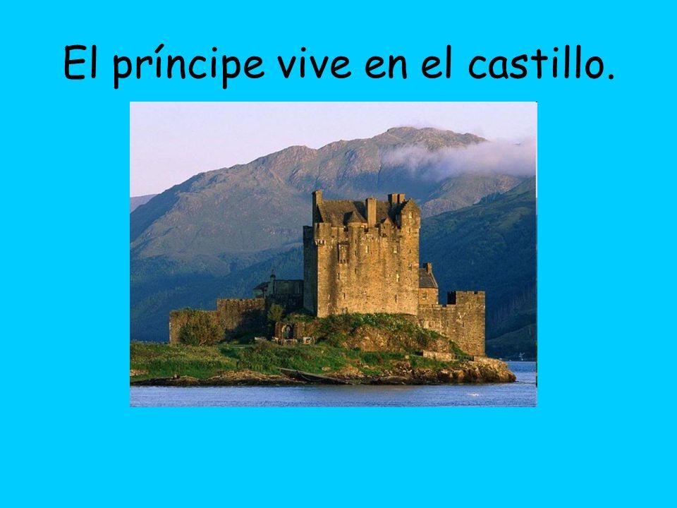 El principe vive en el castillo. El castillo es viejo y grande.