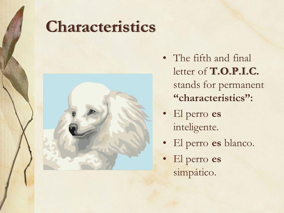 Identification You also use ser to identify possession (i.e., who owns what): Es mi diccionario. No es mi calculadora.