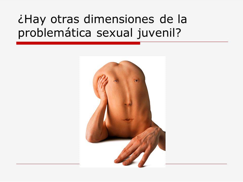 ¿Hay otras dimensiones de la problemática sexual juvenil?