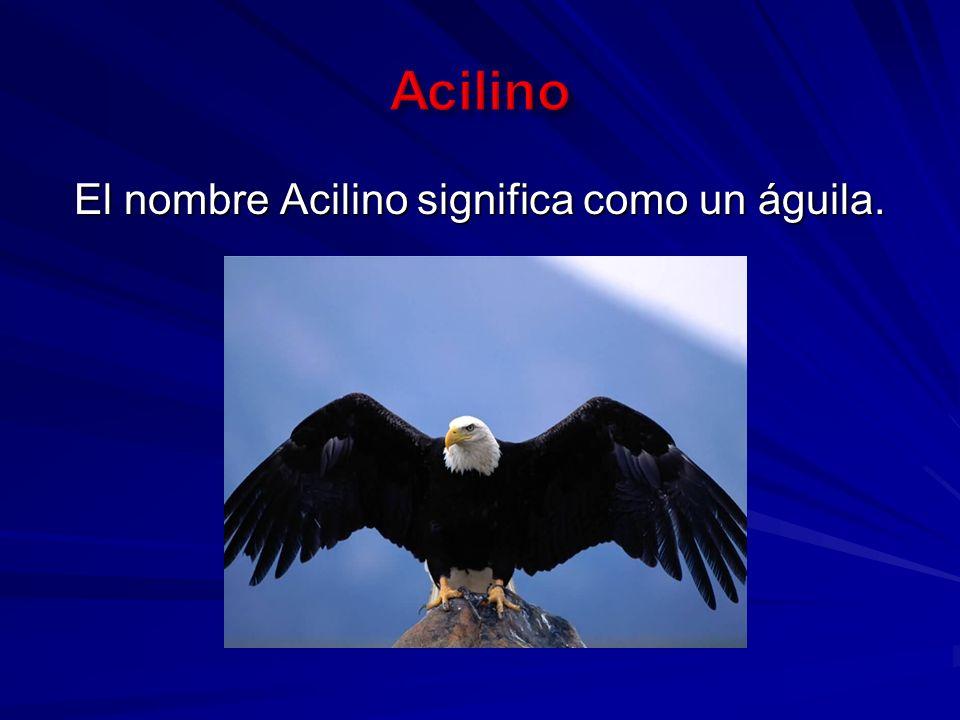 El nombre Acilino significa como un águila.