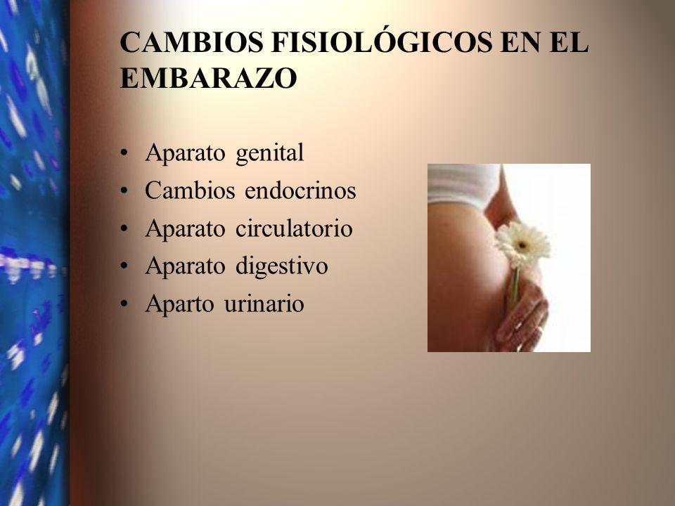 CAMBIOS FISIOLÓGICOS EN EL EMBARAZO Aparato genital Cambios endocrinos Aparato circulatorio Aparato digestivo Aparto urinario