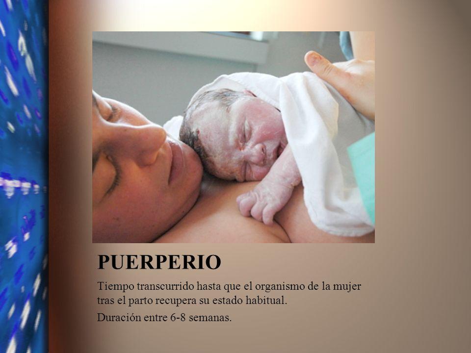 PUERPERIO Tiempo transcurrido hasta que el organismo de la mujer tras el parto recupera su estado habitual. Duración entre 6-8 semanas.