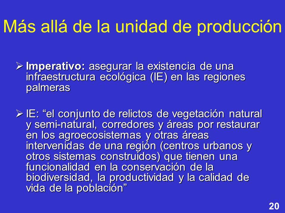 20 Más allá de la unidad de producción Imperativo: asegurar la existencia de una infraestructura ecológica (IE) en las regiones palmeras Imperativo: a