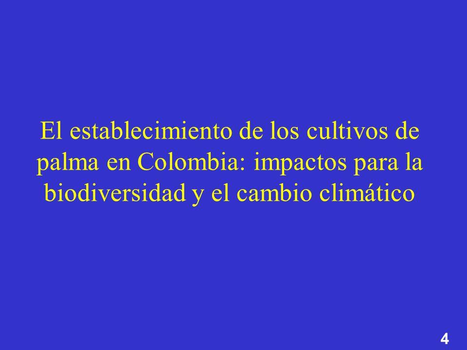 4 El establecimiento de los cultivos de palma en Colombia: impactos para la biodiversidad y el cambio climático