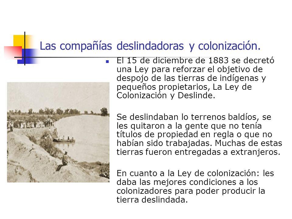 Las compañías deslindadoras y colonización. El 15 de diciembre de 1883 se decretó una Ley para reforzar el objetivo de despojo de las tierras de indíg