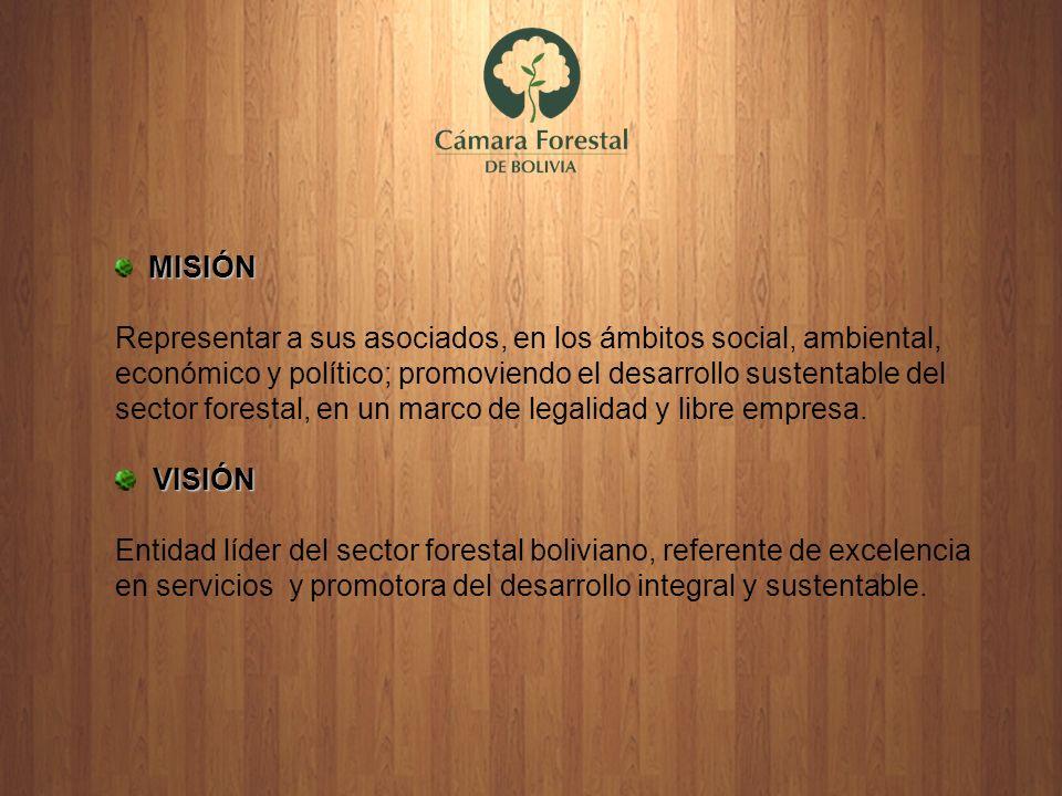 MISIÓN Representar a sus asociados, en los ámbitos social, ambiental, económico y político; promoviendo el desarrollo sustentable del sector forestal,