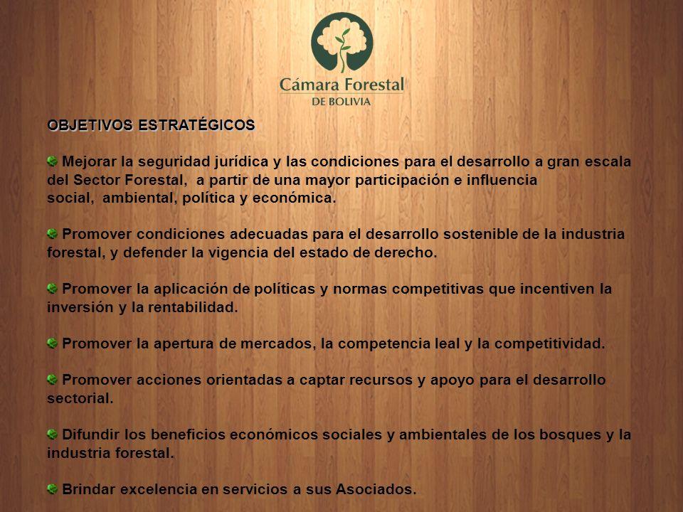 OBJETIVOS ESTRATÉGICOS Mejorar la seguridad jurídica y las condiciones para el desarrollo a gran escala del Sector Forestal, a partir de una mayor par