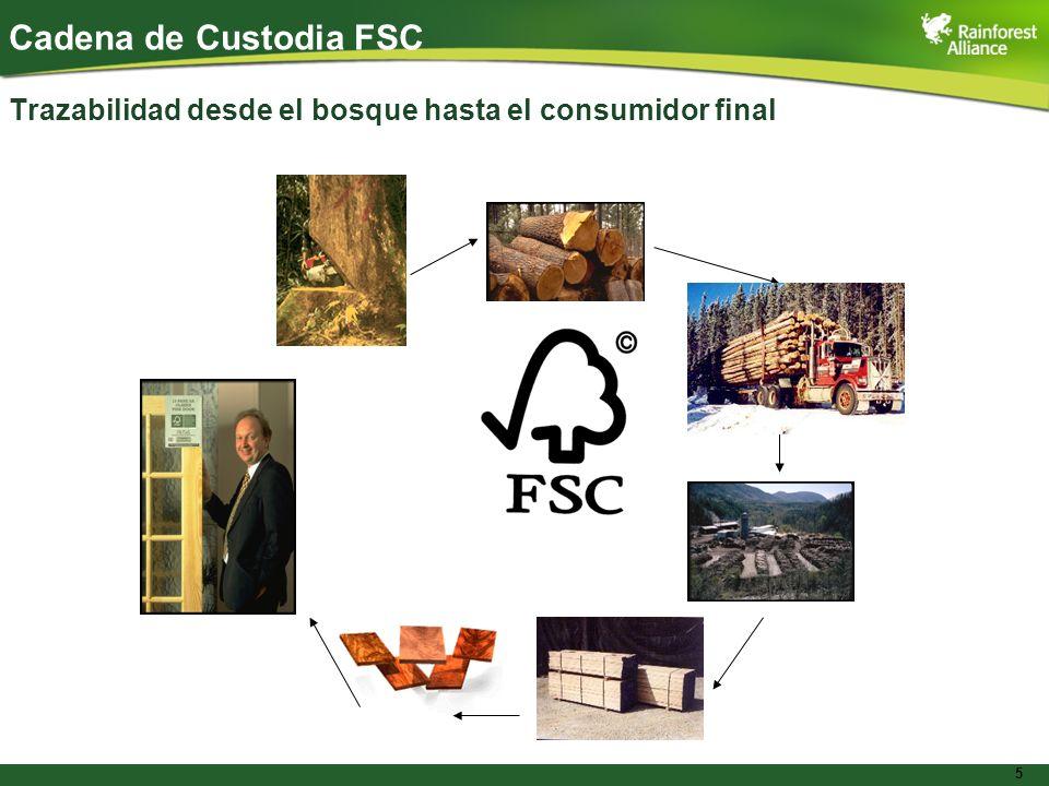 5 Cadena de Custodia FSC Trazabilidad desde el bosque hasta el consumidor final