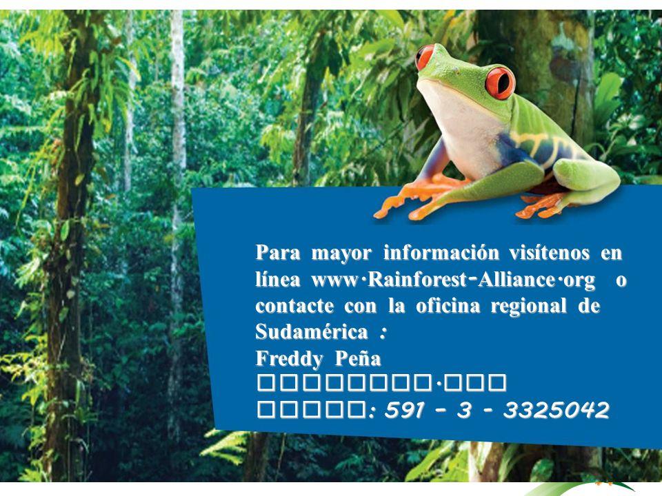Para mayor información visítenos en línea www. Rainforest - Alliance. org o contacte con la oficina regional de Sudamérica : Freddy Peña fpena@ra. org