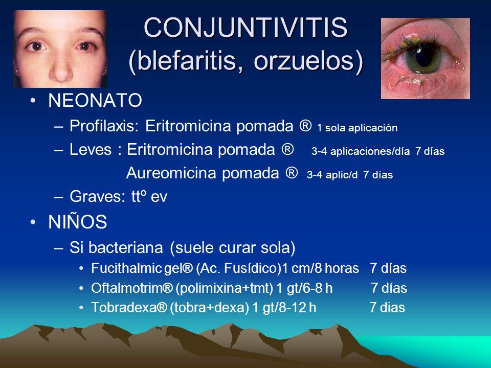 CONJUNTIVITIS (blefaritis, orzuelos) NEONATO –Profilaxis: Eritromicina pomada ® 1 sola aplicación –Leves : Eritromicina pomada ® 3-4 aplicaciones/día
