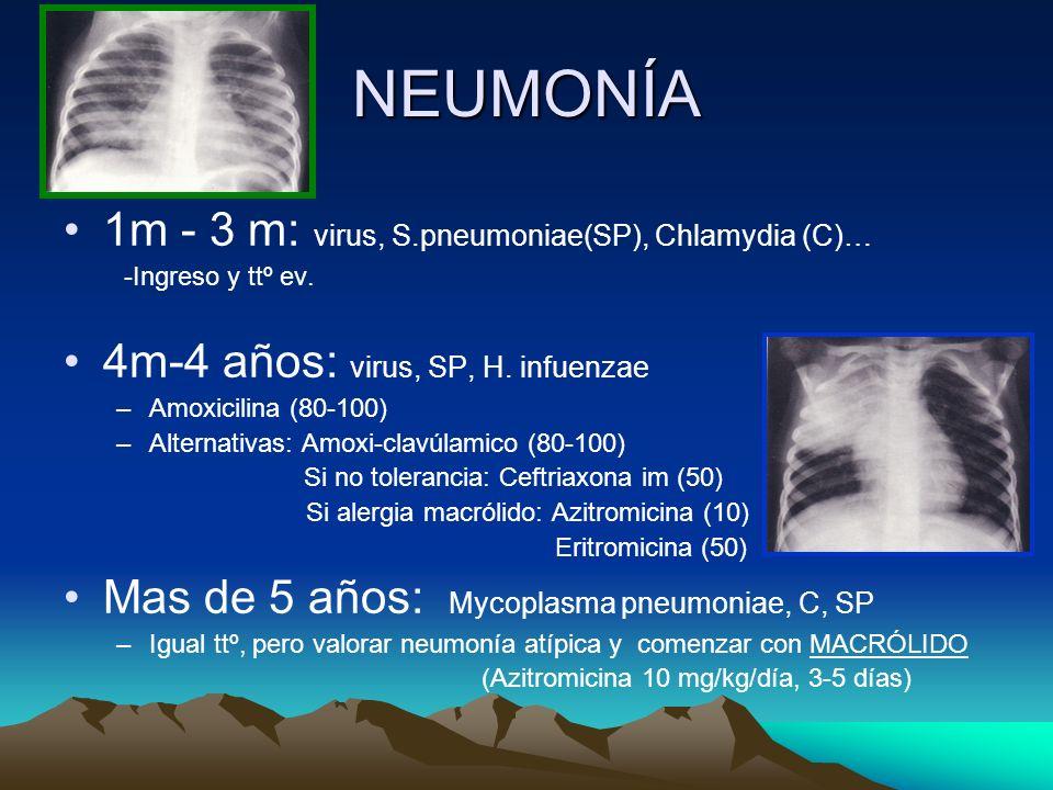 NEUMONÍA 1m - 3 m: virus, S.pneumoniae(SP), Chlamydia (C)… -Ingreso y ttº ev. 4m-4 años: virus, SP, H. infuenzae –Amoxicilina (80-100) –Alternativas: