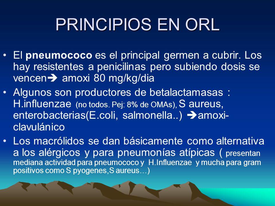 PRINCIPIOS EN ORL El pneumococo es el principal germen a cubrir. Los hay resistentes a penicilinas pero subiendo dosis se vencen amoxi 80 mg/kg/dia Al