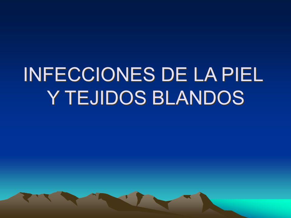 INFECCIONES DE LA PIEL Y TEJIDOS BLANDOS INFECCIONES DE LA PIEL Y TEJIDOS BLANDOS