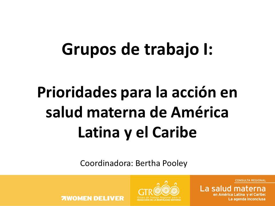 Grupos de trabajo I: Prioridades para la acción en salud materna de América Latina y el Caribe Coordinadora: Bertha Pooley