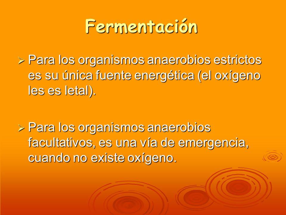 Fermentación Para los organismos anaerobios estrictos es su única fuente energética (el oxígeno les es letal). Para los organismos anaerobios estricto