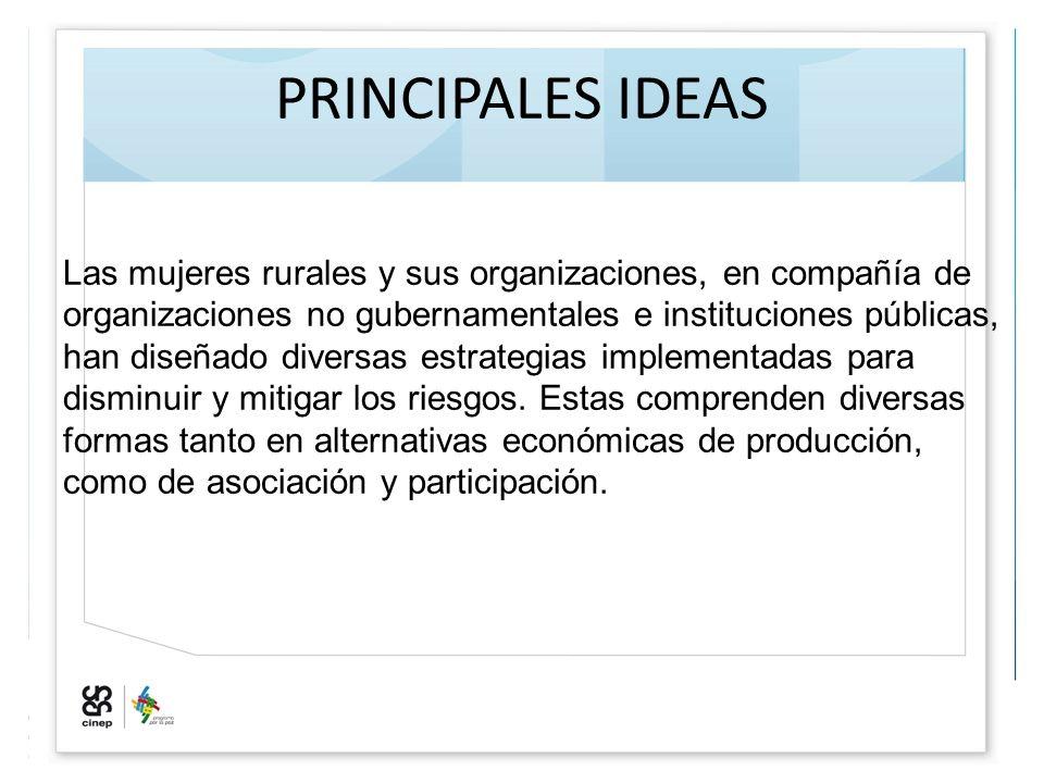 PRINCIPALES IDEAS Las mujeres rurales y sus organizaciones, en compañía de organizaciones no gubernamentales e instituciones públicas, han diseñado di