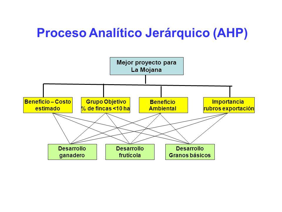 Proceso Analítico Jerárquico (AHP) Mejor proyecto para La Mojana Beneficio – Costo estimado Grupo Objetivo % de fincas <10 ha Beneficio Ambiental Impo