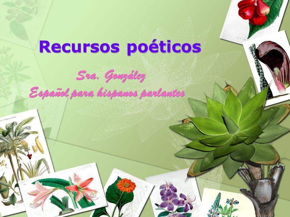 Recursos poéticos Sra. González Español para hispanos parlantes Sra. González Español para hispanos parlantes