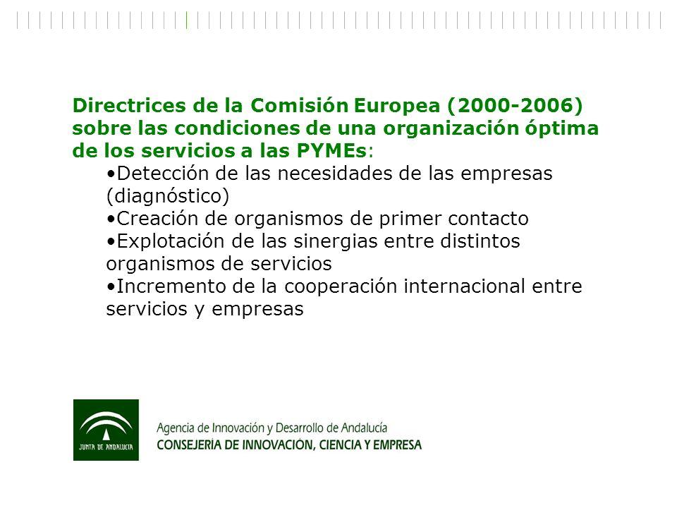 Directrices de la Comisión Europea (2000-2006) sobre las condiciones de una organización óptima de los servicios a las PYMEs: Detección de las necesid