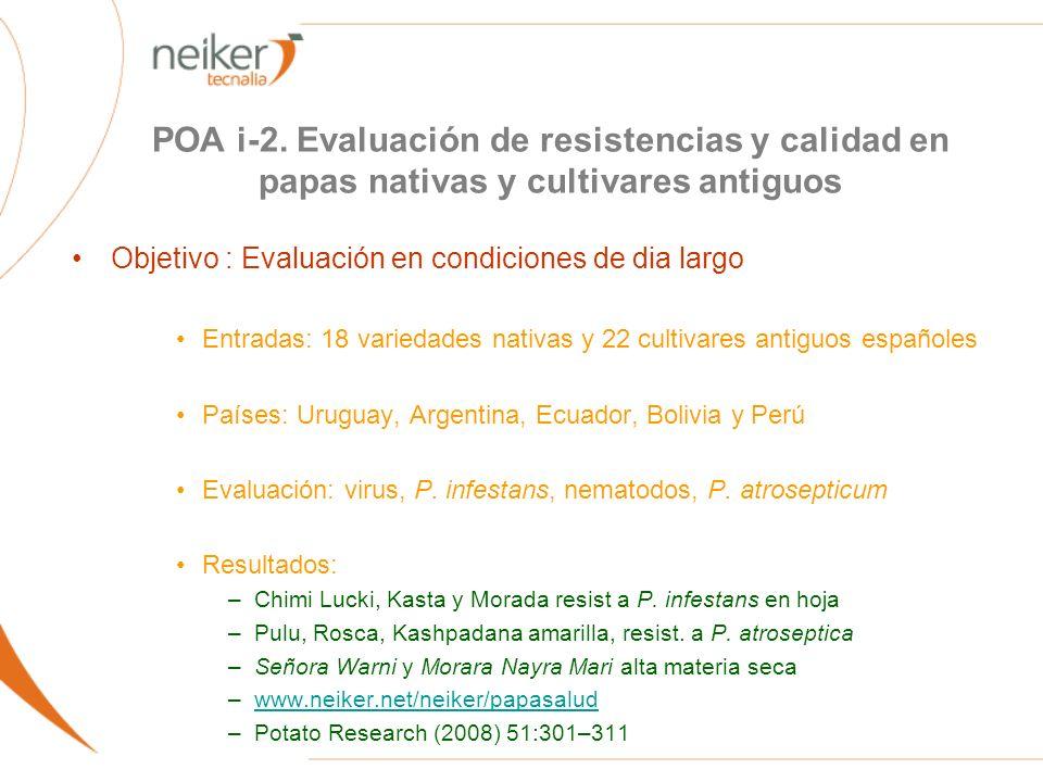 POA i-2. Evaluación de resistencias y calidad en papas nativas y cultivares antiguos Objetivo : Evaluación en condiciones de dia largo Entradas: 18 va