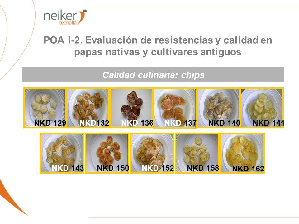 NKD 136NKD 141 NKD132 NKD 140NKD 137 NKD 129 NKD 162 NKD 152NKD 143NKD 150NKD 158 Calidad culinaria: chips