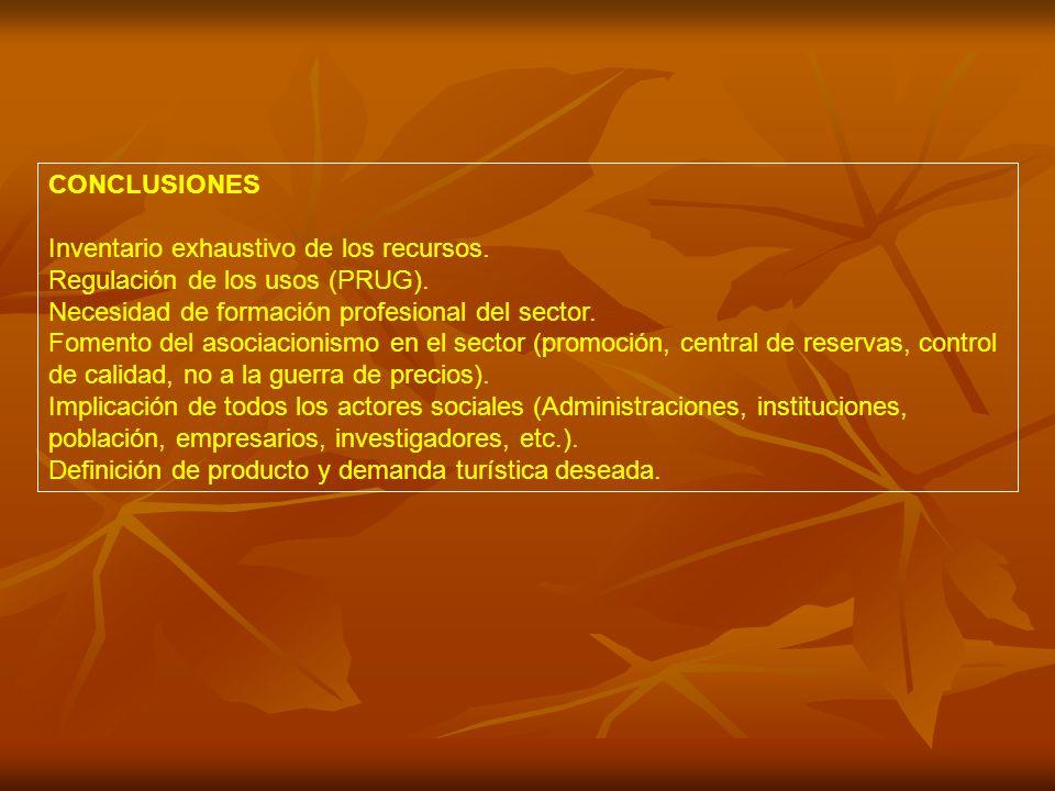 CONCLUSIONES Inventario exhaustivo de los recursos.