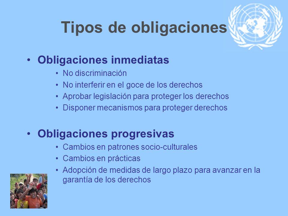 Tipos de obligaciones Obligaciones inmediatas No discriminación No interferir en el goce de los derechos Aprobar legislación para proteger los derecho
