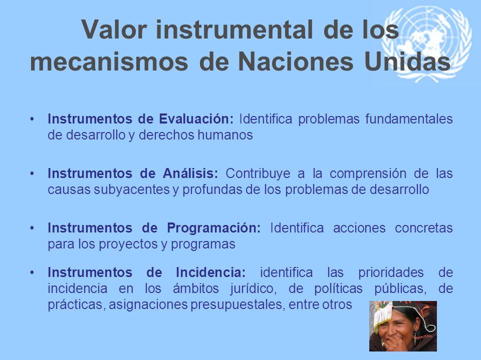 Valor instrumental de los mecanismos de Naciones Unidas Instrumentos de Evaluación: Identifica problemas fundamentales de desarrollo y derechos humano