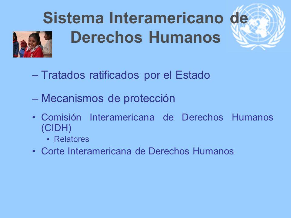 Sistema Interamericano de Derechos Humanos –Tratados ratificados por el Estado –Mecanismos de protección Comisión Interamericana de Derechos Humanos (