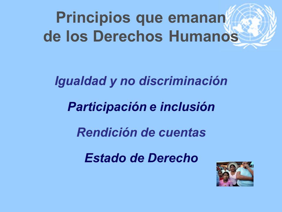 Principios que emanan de los Derechos Humanos Igualdad y no discriminación Participación e inclusión Rendición de cuentas Estado de Derecho