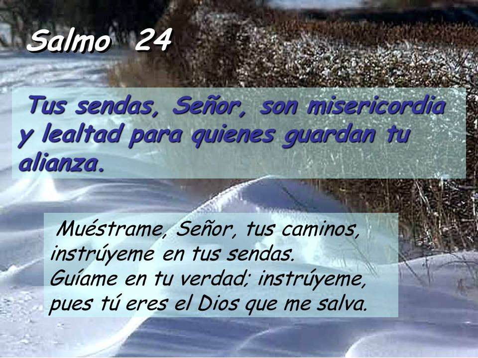 Salmo 24 Tus sendas, Señor, son misericordia y lealtad para quienes guardan tu alianza.