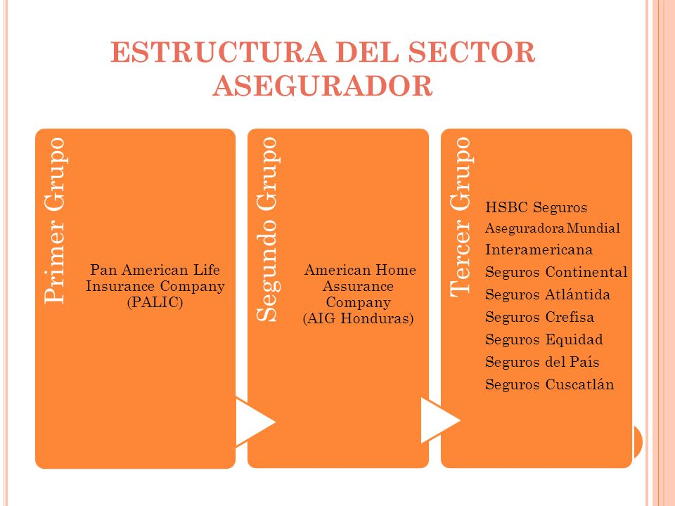 ESTRUCTURA DEL SECTOR ASEGURADOR Primer Grupo Pan American Life Insurance Company (PALIC) Segundo Grupo American Home Assurance Company (AIG Honduras)