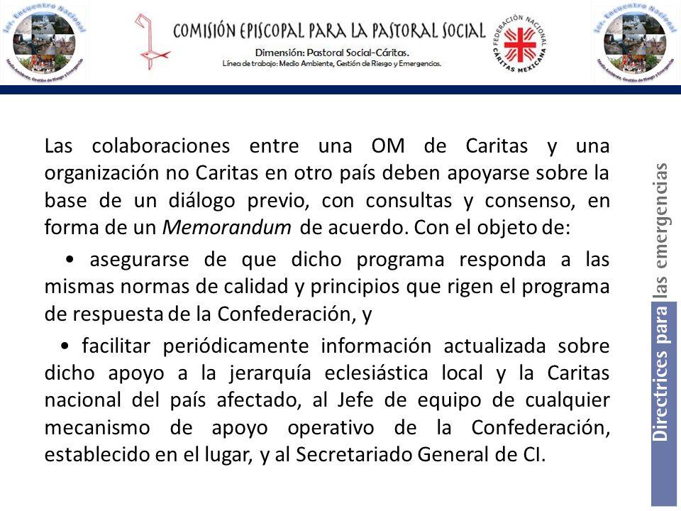 Las colaboraciones entre una OM de Caritas y una organización no Caritas en otro país deben apoyarse sobre la base de un diálogo previo, con consultas