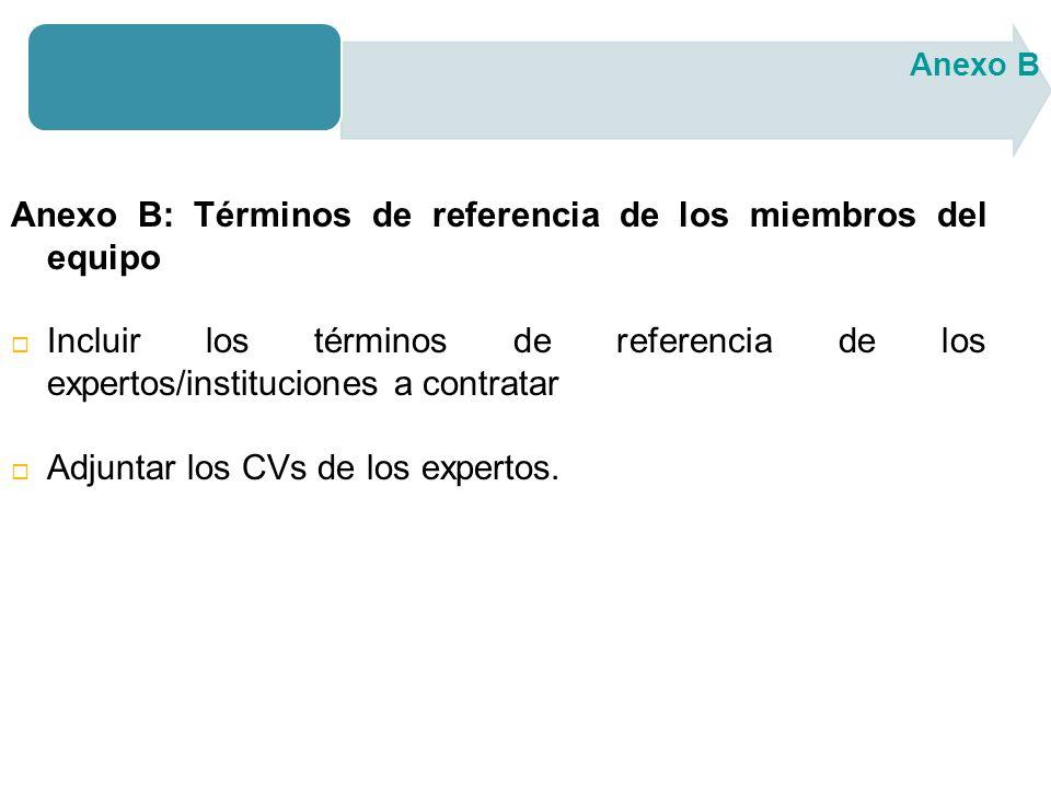 Anexo B: Términos de referencia de los miembros del equipo Incluir los términos de referencia de los expertos/instituciones a contratar Adjuntar los CVs de los expertos.