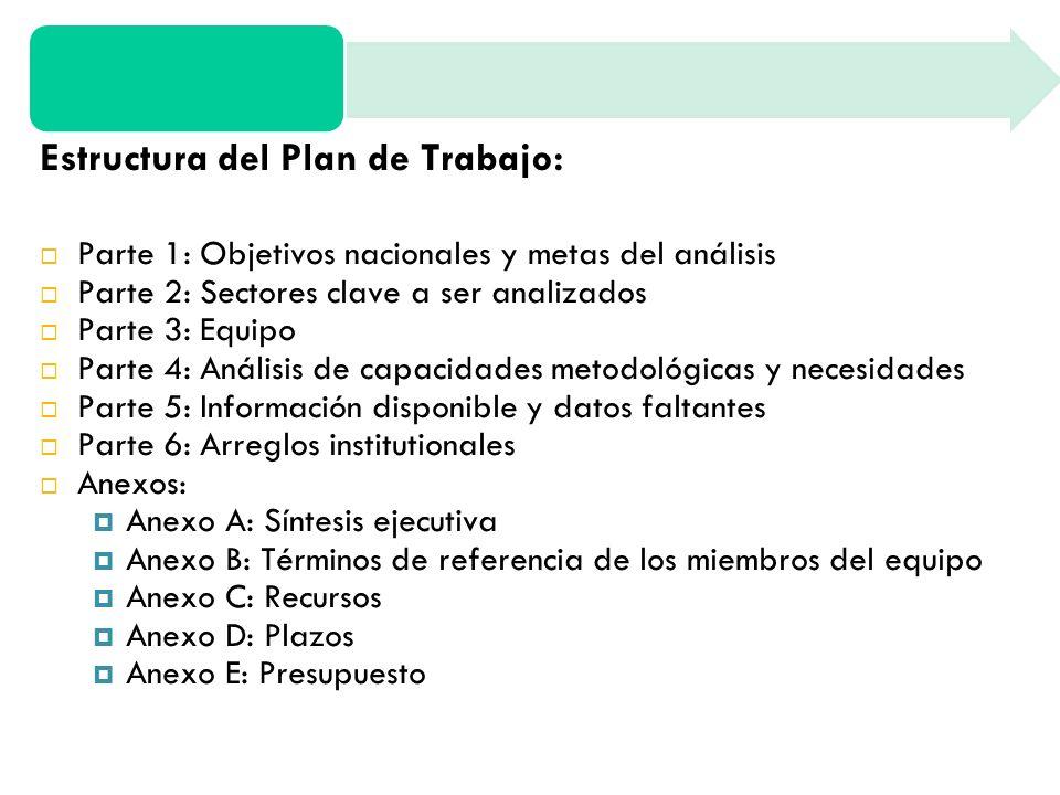 Estructura del Plan de Trabajo: Parte 1: Objetivos nacionales y metas del análisis Parte 2: Sectores clave a ser analizados Parte 3: Equipo Parte 4: Análisis de capacidades metodológicas y necesidades Parte 5: Información disponible y datos faltantes Parte 6: Arreglos institutionales Anexos: Anexo A: Síntesis ejecutiva Anexo B: Términos de referencia de los miembros del equipo Anexo C: Recursos Anexo D: Plazos Anexo E: Presupuesto