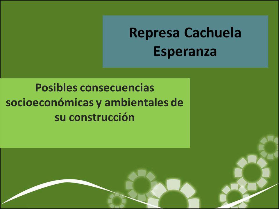 Contexto de proyecto de Cachuela Esperanza IIRSA –La Iniciativa para la Integración de la Infraestructura Regional Sudamericana – Ambicioso plan de inversiones (12 países) – concepción de integración basada en megaproyectos de transporte, energía y comunicaciones.