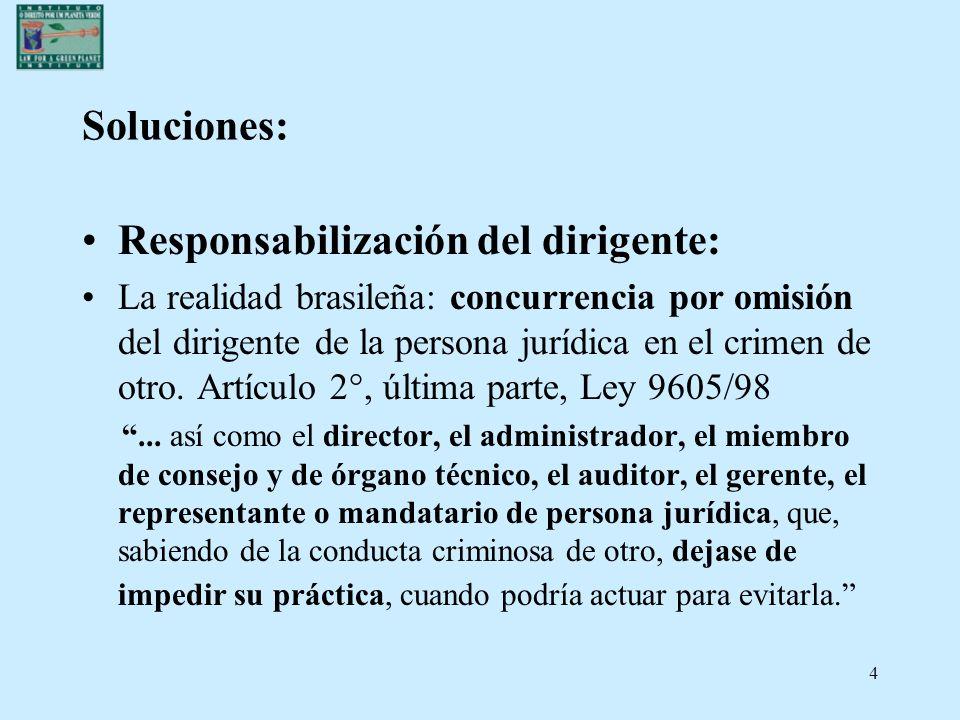 15 RESPONSABILIDAD PENAL EN LOS CRÍMENES CONTRA EL AMBIENTE Persona física y persona jurídica: ¿ Concurso necesario de agentes.